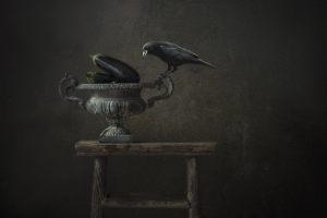 1. Marijke de Haze - That's why birds don't fly