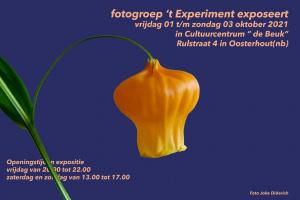 Expositie FP 't Experiment
